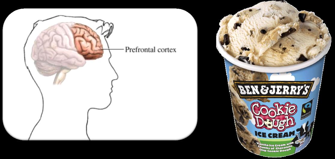 PrefrontalCortex-BenJerry