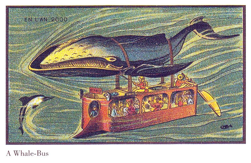 Whales Bus in France in the Year 2000