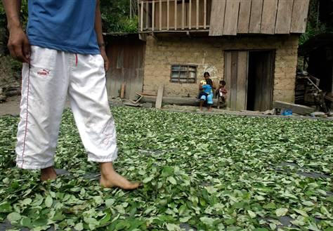 colombian-farmers